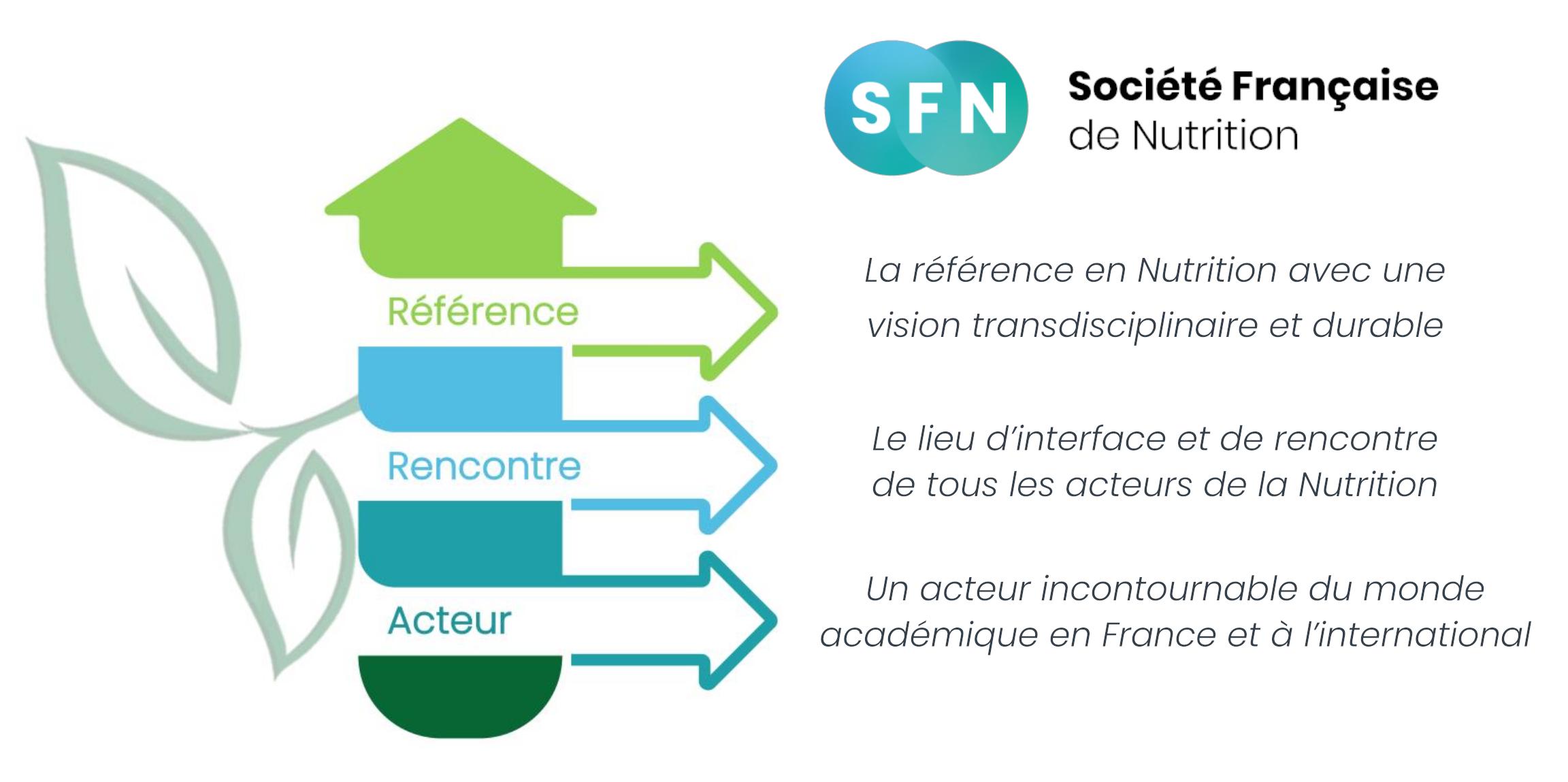 Vision de la SFN